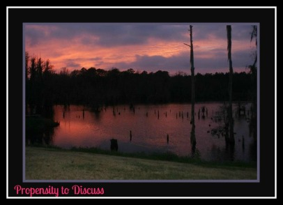 Sunset over the pond. A Southern Staple. A Propensity to Discuss post.