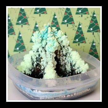 Grow your own tree. 17 Holiday Science Labs. A Propensity to Discuss post.